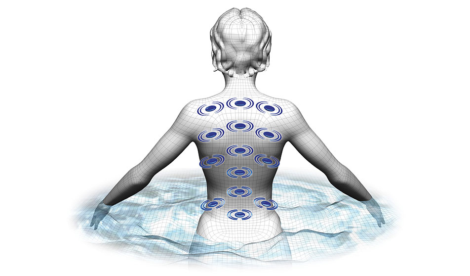 BioMagnetic Therapy System
